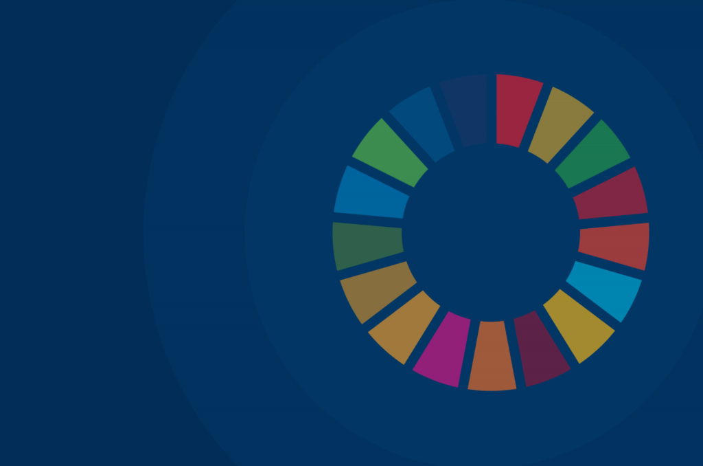 U.N. Sustainable Development Goals