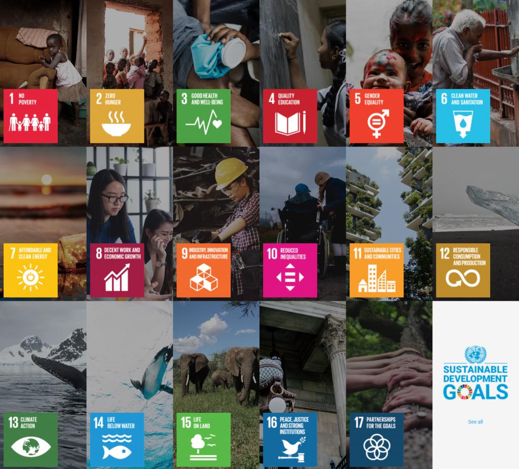 impact investing SDG's